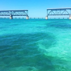 A photo of the Beautiful water around the bridge on Big Pine and the Lower Keys.