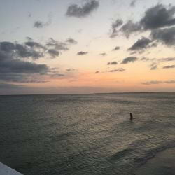 A picture of someone taking anEvening walk in the Gulf of Mexico in Fort Myers Beach