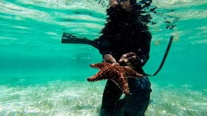 Underwater adventures in the Bahamas