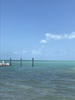 Pick a piling off Islamorada in the Florida Keys
