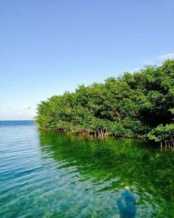 Lee side of the island in Islamorada Florida Keys