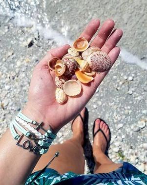 A good day shelling on Sanibel Island