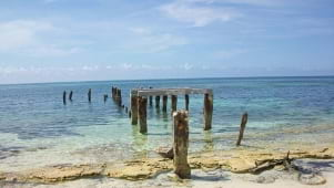 An old pier around San Salvador Bahamas